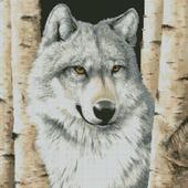Схема вышивки Волк между берез