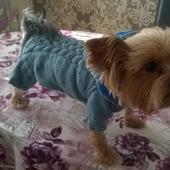 Для домашних животных — рукодельные товары