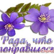 Магазин Ромашева Елена