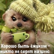 Магазин тасик-2017