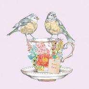 Магазин Matilda Bird