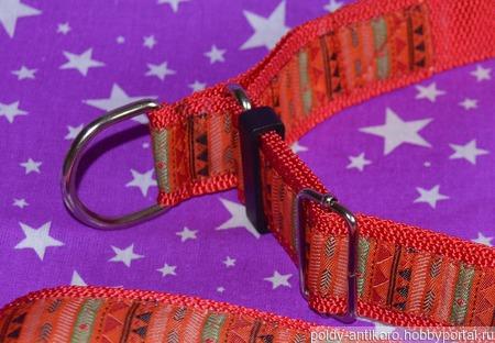 Комплект для собак Мексика ручной работы на заказ