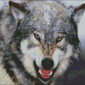 """Схема вышивки """"Волк"""""""