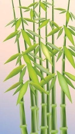"""Схема для вышивания """"Бамбук"""" ручной работы на заказ"""
