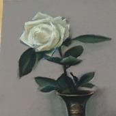 Картина с цветами пастель Белая роза