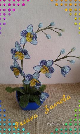 Орхидея голубая ручной работы на заказ