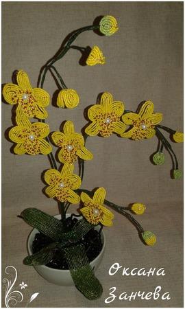 Орхидея ручной работы на заказ