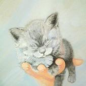 "Картина ""Чудо на ладошке"" спящий котенок для интерьера серый"