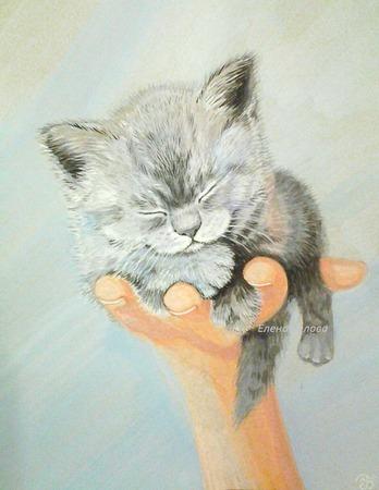 """Картина """"Чудо на ладошке"""" спящий котенок для интерьера серый ручной работы на заказ"""