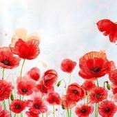Картина Маки цветы для интерьера гостиной спальни красный белый алый