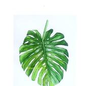 Картина Лист пальмы Монстера для интерьера тропический стиль зеленый