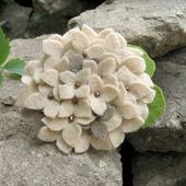 "Брошь цветок ""Гортензия сухоцвет"" бежевый серый"