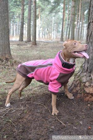 Курточки для собак ручной работы на заказ