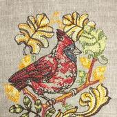 Вышивка Красный кардинал