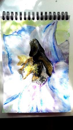 Дельфиниума цвет ручной работы на заказ