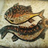 Рыбы-камень