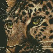 Взгляд леопарда. Схема вышивки крестом