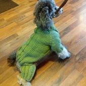 Вязаная одежда для собак и кошек