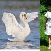 """Костюм """"Лебедь белая"""" авторская работа"""