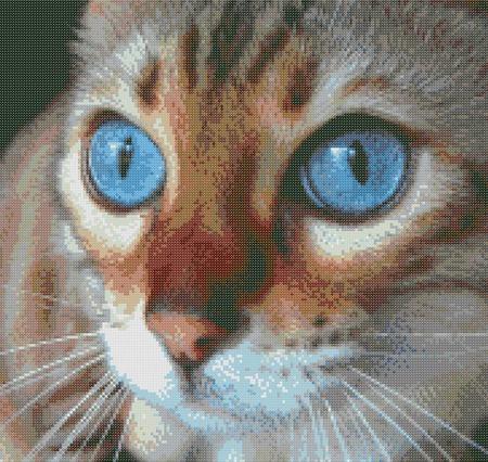 Схема вышивки Кошка ручной работы на заказ