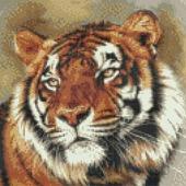 Набор для вышивки бисером Тигр