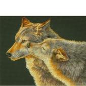 Набор для вышивки Dimensions 35283 «Поцелуй Волков»