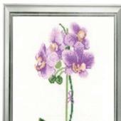 Набор для вышивки Риолис 1163 «Сиреневая орхидея»
