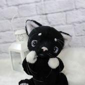 Котенок тедди черный