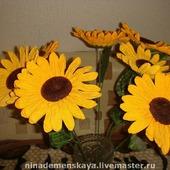 фото: Цветы (красивые цветы)