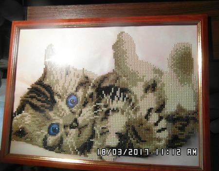 """Алмазная мозаика """"Котенок"""" ручной работы на заказ"""