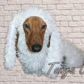 Вязаная шуба для собаки
