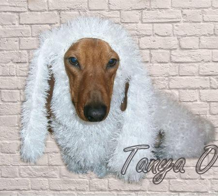 Вязаная шуба для собаки ручной работы на заказ