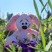 фото: Куклы и игрушки (заяц игрушка плюшевый подарок милота)