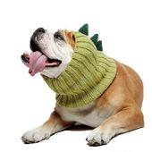 фото: Для домашних животных (снуд для собаки крючком)
