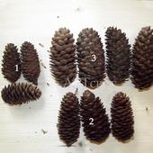 Шишки еловые в ассортименте 5-10 см