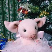 Символ года свинка Карамелька