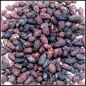 Кизил лесной крымский ( 150 гр ) - травы Крыма