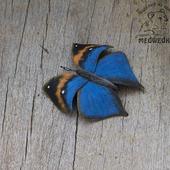Брошь из кожи Бабочка Каллима