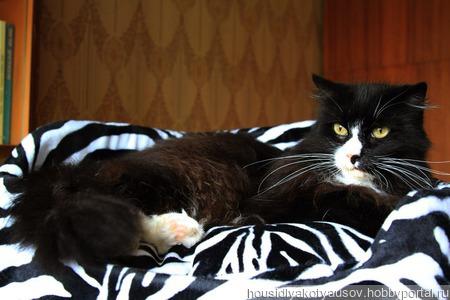 Диванчик для кошки или маленькой собачки. ручной работы на заказ