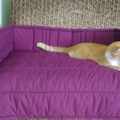 фото: Для домашних животных (на диван)