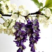Серьги Сиреневая гроздь из полимерной глины