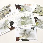 """Набор авторских открыток """"Экология чувств"""""""