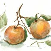 """Акварель """"Мандаринчики"""", картина, мандарины"""