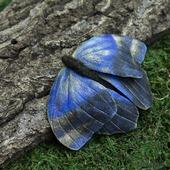 Брошь из кожи Бабочка Калиго Эврилокус