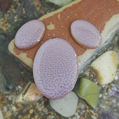 Набор из трех овальных кабошонов кисельно-перламутрового цвета