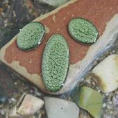 Набор из трех овальных кабошонов, цвет - лесной зеленый