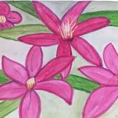 Акварели Цветы экзотические