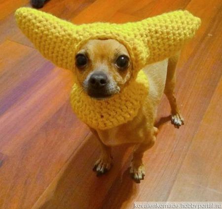 Шапочка с ушками для собаки ручной работы на заказ