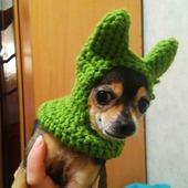 фото: Для домашних животных (шерсть 100%)