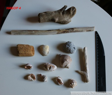 Ракушки морское дерево дары моря 6 наборов ручной работы на заказ